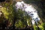 bild Ruatapu Cave Reisefotografie Neuseeland
