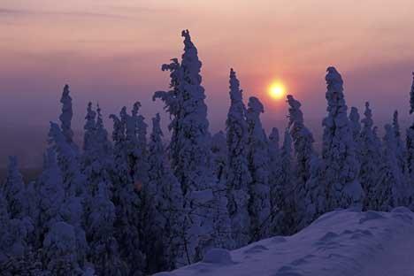 Bild Winterlandschaft