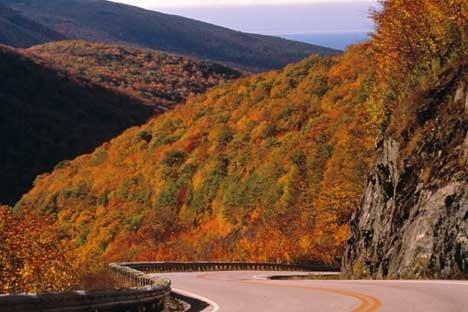 Bild Herbst Wald Ostkanada Reise